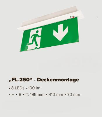 FL_250_Deckenmontage